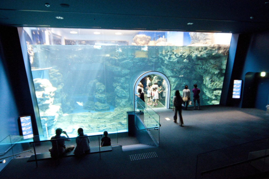 しものせき水族館 海響館 イメージ
